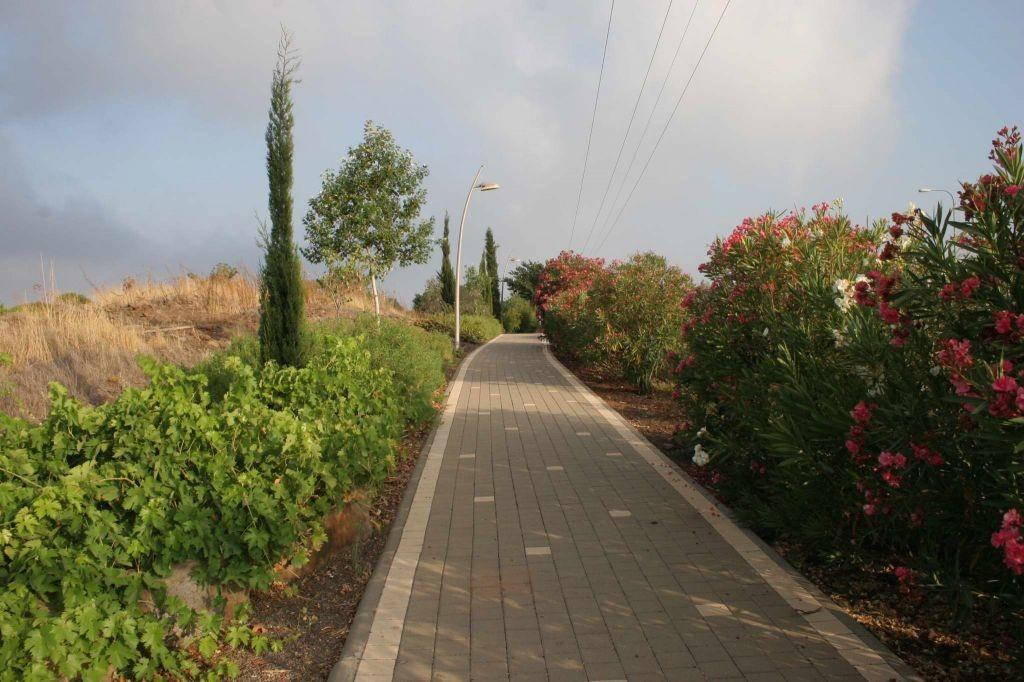 katzrin-promenade-5128