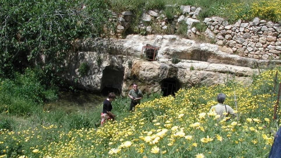 cisterns-ein-tzuba-965x543